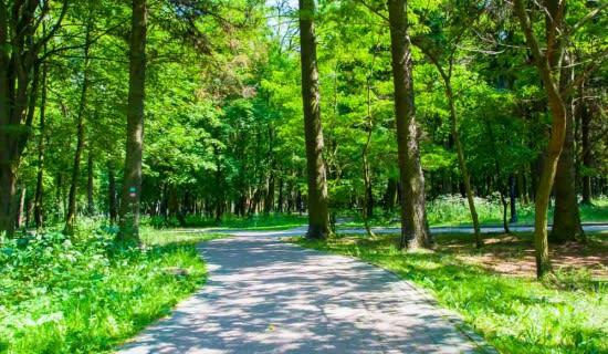 Park Przyrodniczy